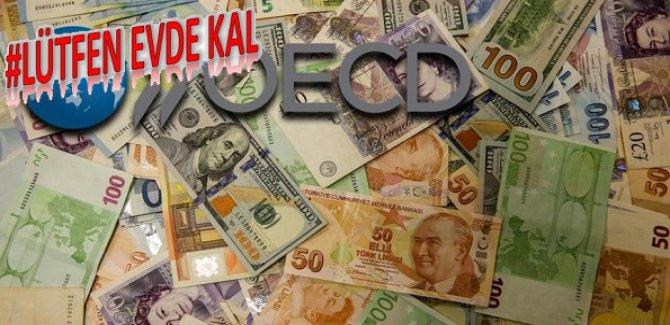 OECD: Karantinadaki her ay, % 2 lik kayıptır