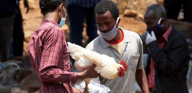 DSÖ'den Etiyopya için sarı humma salgını uyarısı