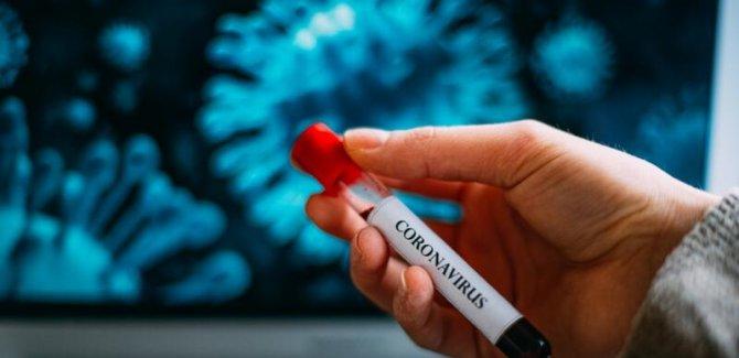 Bilim adamları, virüsün vücuda hangi organdan girdiğini tespit etti