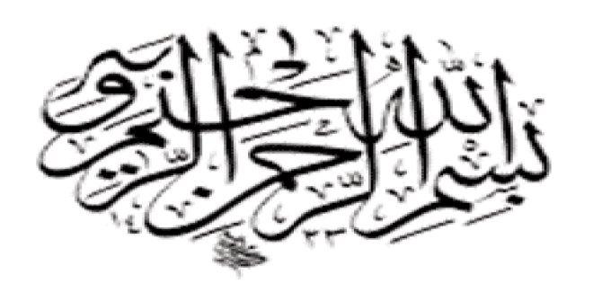 İslam Ümmetinin Kadir Gecesi Mübarek Olsun