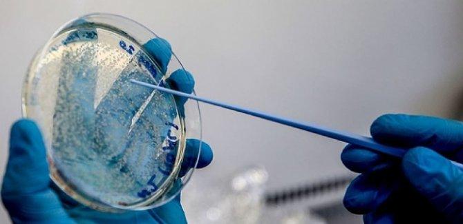 İngiliz hükümeti 90 milyon potansiyel COVID-19 aşısı için sipariş verdi