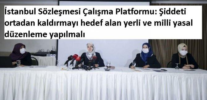 İstanbul Sözleşmesi Çalışma Platformu