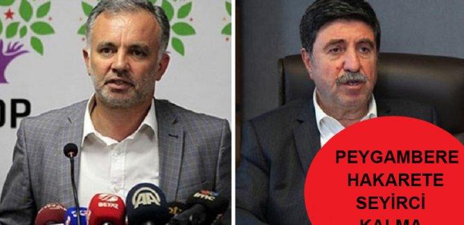 HDP'den Ayhan Bilgen ve Altan Tan açıklaması