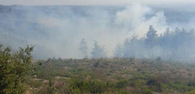4 ilde 9 yangınla mücadele sürüyor