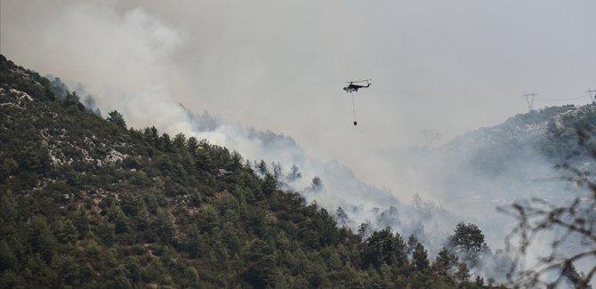 OGM: 208 orman yangınından 196'sı kontrol altına alındı