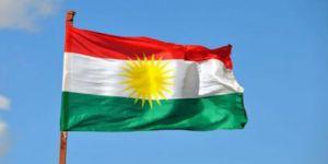 Nûnerê Partî li Misrê:Gelek welatên Ereb li gel çarenivîsa gelê Kurd re ne