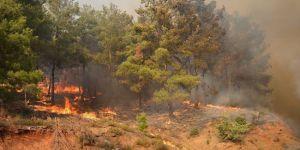 İzmir'deki orman yangını söndürülemiyor: 2 bin kişi tahliye edildi