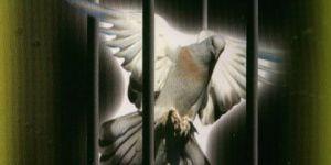 Yeniden Dirilişe Örnekler/Maarif