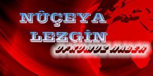 Hin ketîbeyên nêzîkî Tirkiyê bi navê Artêşa Azad dest bi êrîşa Efrînê kirin