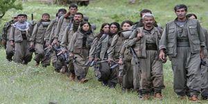 'PKK'nin çıkartılması için Türkiye'ye ihtiyacımız yok'