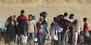 31 milyon kişi kendi ülkesinde sığınmacı