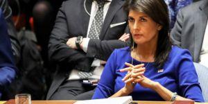 ABD'nin BM Temsilcisi: Filistin'i koruma tasarısı işe yaramaz