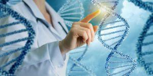 Eksikliği otizme neden olabilen gen keşfedildi
