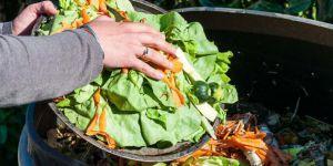 'Ortadoğu'da yılda 1 trilyon dolardan fazla gıda israf ediliyor!'