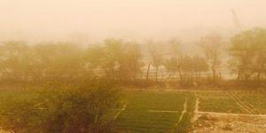 Toz fırtınası 120 kişiyi hastanelik etti