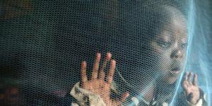 Dünya Sağlık Örgütü'nden endişe verici sıtma raporu