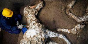Pompeii'de taşlaşmış at kalıntıları bulundu