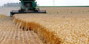 Bağdat, Kürt çiftçilere ödeme yapacak