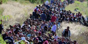Avrupa'ya kaçak göçte önemli düşüş
