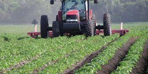 Kürdistanlı çiftçilerden Avrupa çıkarması
