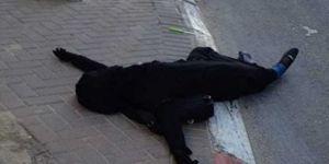 İsrail Askerleri 16 Yaşında Bir Kız Çocuğunu Öldürdü