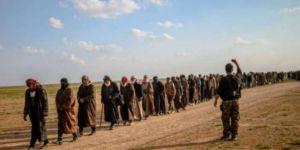 Peşmerge Komutanı: Baxoz'dan kaçan IŞİD'liler Şengal'e geçiriliyor