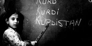 Kürt aydınlarından Hasan Ruhani'ye 'Kürtçe eğitim dili olsun' talebi