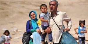 Tirkiye heta dawiya salê 80 hezar penaberan dersînor dike