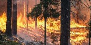Rusya: İklim silahı kullanılmış olabilir