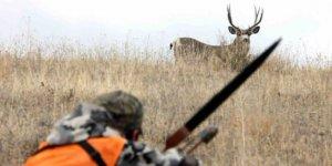 Kürdistan'da yaban hayvanlarını avlanmasına yüklü miktarda para cezası getirildi