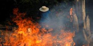 Şewata li daristanên Amazonê bûye metirsiyeke mezin li ser erdê