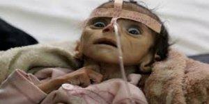 Dünya Sağlık Örgütü'nden Yemen Uyarısı