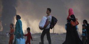 HRW: Iraklı göçmenler kamplardan zorla gönderiliyor