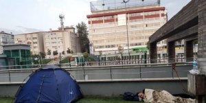 Depremin ardından 2 günde 15 bin 708 konuta sigorta yaptırıldı