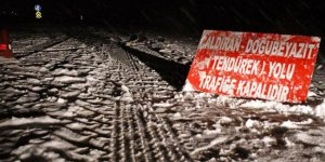Van ve Muş'ta 45 köy yolu kapandı