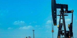 DSG'nin elindeki siyasi silah: Petrol