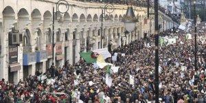 Cezayir'de Fransızca konuşmaya halkın öfkesi var
