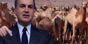 Ömer Çelik'ten Avustralya'ya deve çağrısı