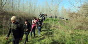 Yunanistan'a geçen göçmen sayısı 130 bin 469