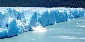 Antarktika'da 90 milyon yıl önce yağmur ormanı varmış