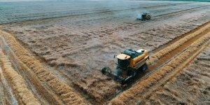 BM:Yeni dünya düzeninde gıda ve tarım çok daha önemli hale gelecek