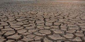 Tarım Bakanlığı raporu: Kuraklık artacak, planlar bu çerçevede yapılmalı