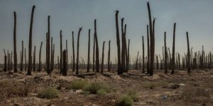 Bağdat'taki hava sıcaklığı dünyayı endişelendiriyor