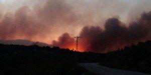 Adana'daki yangında kudaklama şüphesi; 6 köy boşaltıldı