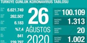 20 kişi daha hayatını kaybetti: Yeni vaka sayısı 1313
