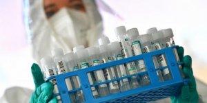 Avrupa'da koronavirüs mutasyonu vakaları