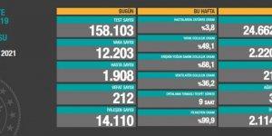 212 can kaybı, 12 bin 203 yeni vaka