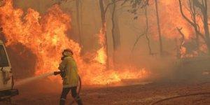 Avustralya'da kabus geri dönüyor: 71 ev yandı
