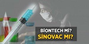 BioNTech Sinovac'tan daha güçlü antikor tepkisi gösteriyor
