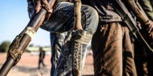 Nijerya'da Boko Haram'ın  73 üyesi etkisiz hale getirildi